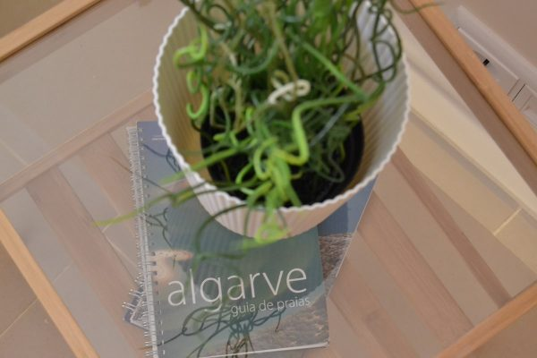 algarve guide-min