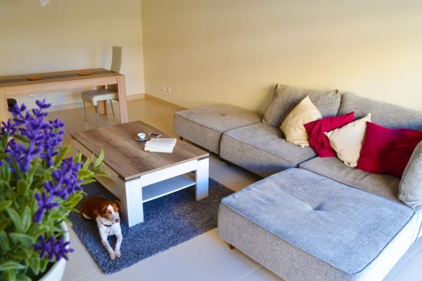 living-room-min-1-min